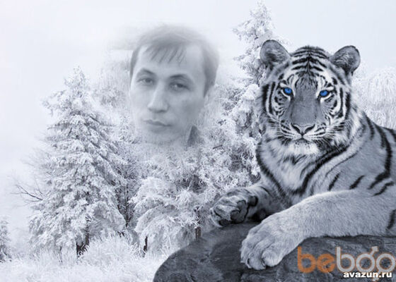 Фото мужчины Албанец, Армавир, Россия, 37