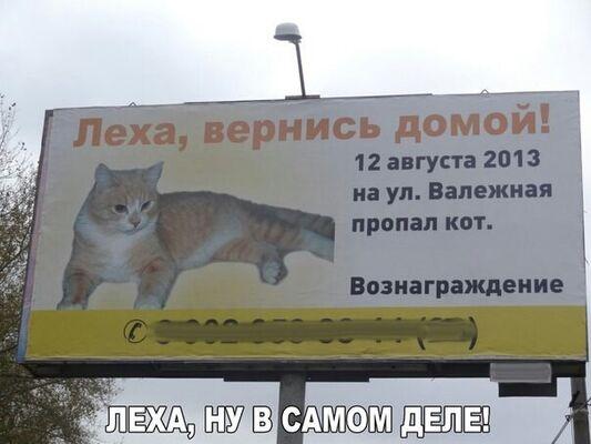 Фото мужчины Алекс, Львов, Украина, 37