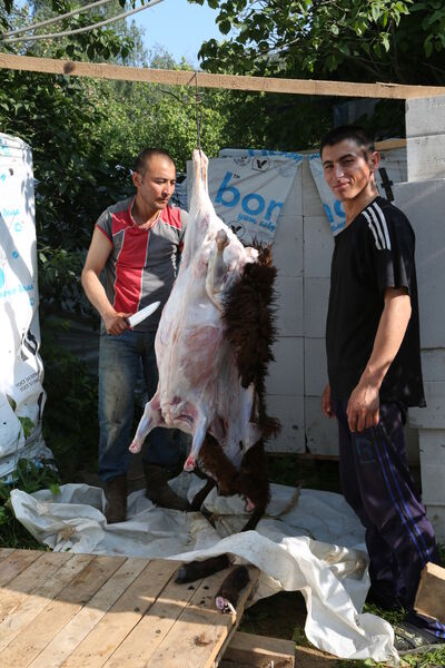 Фото мужчины Нодир8962986, Бухара, Узбекистан, 36