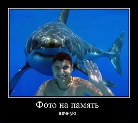 Фото мужчины эдуард, Минск, Беларусь, 55